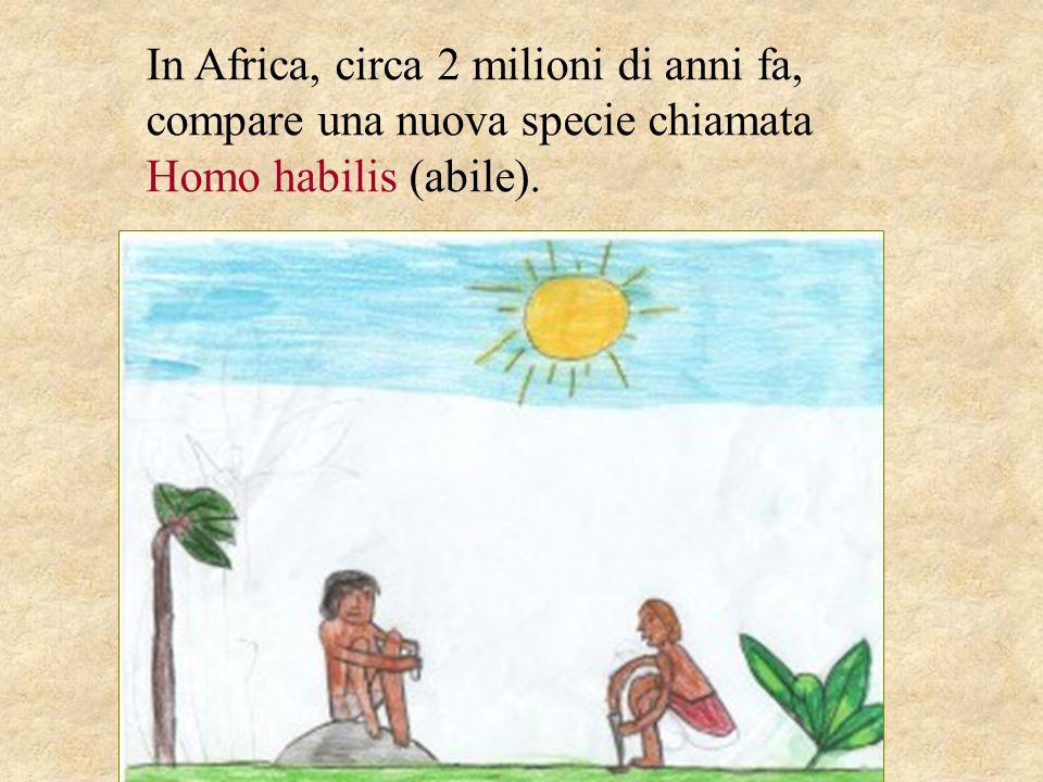 In Africa, circa 2 milioni di anni fa, compare una nuova specie chiamata Homo habilis (abile).