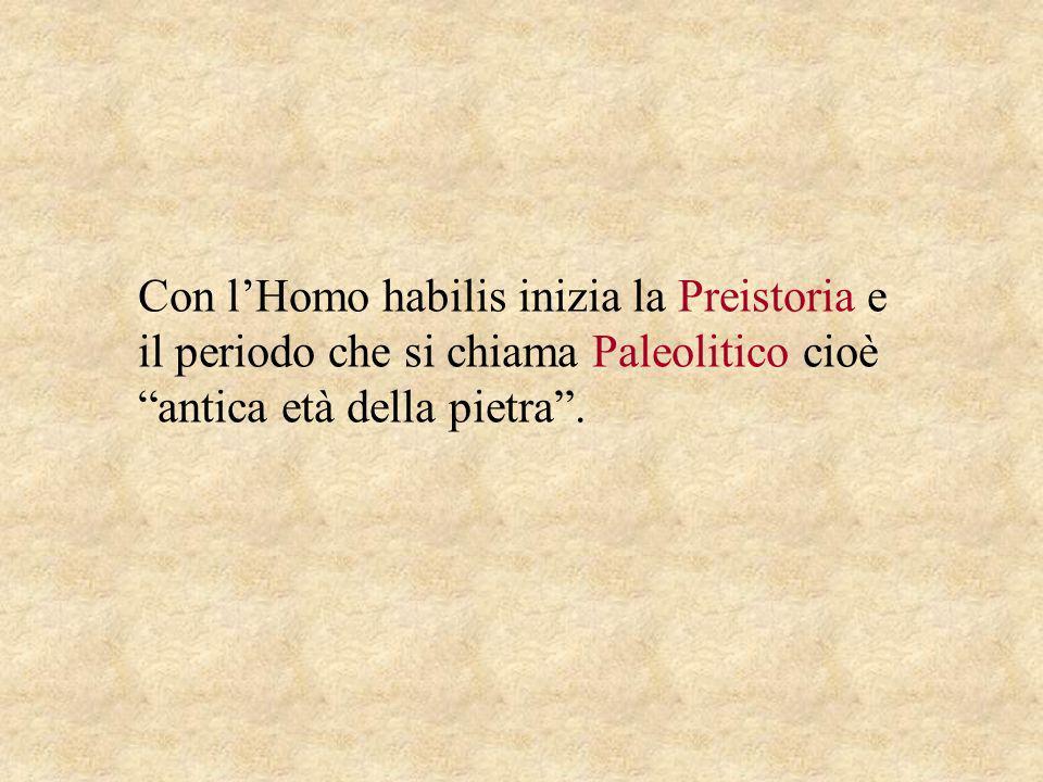 Con lHomo habilis inizia la Preistoria e il periodo che si chiama Paleolitico cioè antica età della pietra.