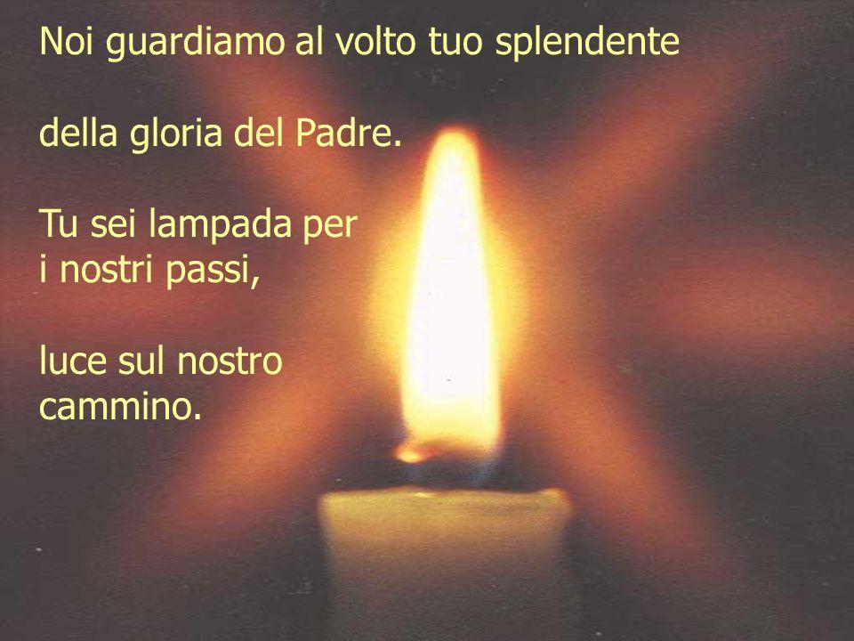 Noi guardiamo al volto tuo splendente della gloria del Padre. Tu sei lampada per i nostri passi, luce sul nostro cammino.