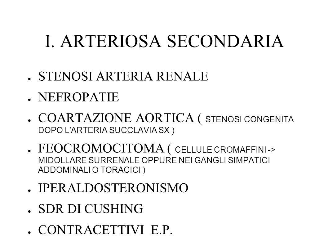 I. ARTERIOSA SECONDARIA STENOSI ARTERIA RENALE NEFROPATIE COARTAZIONE AORTICA ( STENOSI CONGENITA DOPO L'ARTERIA SUCCLAVIA SX ) FEOCROMOCITOMA ( CELLU