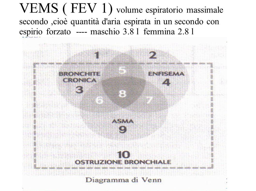 VEMS ( FEV 1) volume espiratorio massimale secondo,cioè quantità d'aria espirata in un secondo con espirio forzato ---- maschio 3.8 l femmina 2.8 l