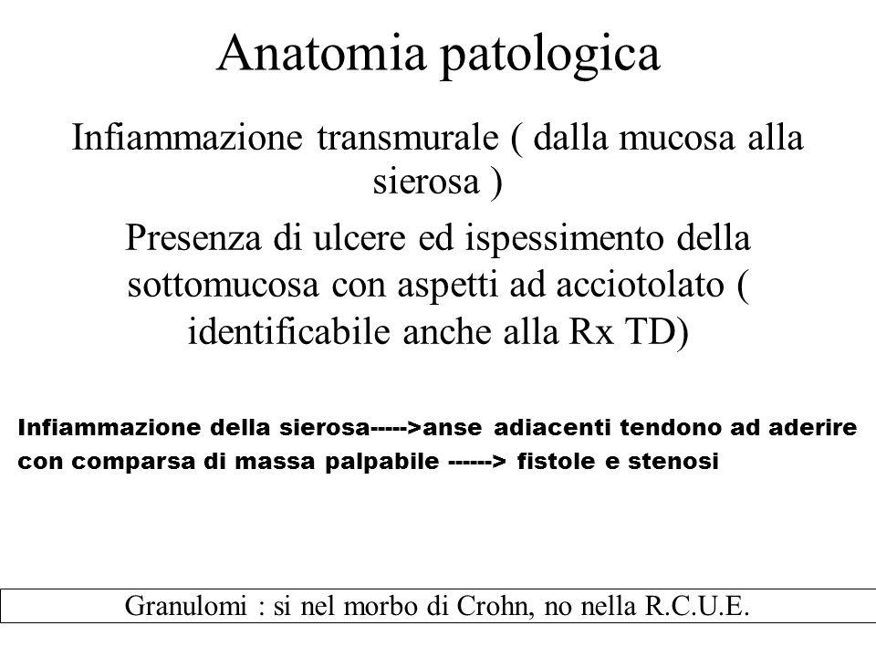 Anatomia patologica Infiammazione transmurale ( dalla mucosa alla sierosa ) Presenza di ulcere ed ispessimento della sottomucosa con aspetti ad acciot