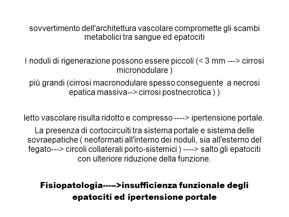 sovvertimento dell'architettura vascolare compromette gli scambi metabolici tra sangue ed epatociti I noduli di rigenerazione possono essere piccoli (