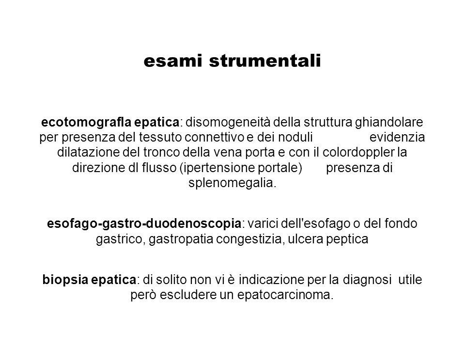 esami strumentali ecotomografla epatica: disomogeneità della struttura ghiandolare per presenza del tessuto connettivo e dei noduli evidenzia dilatazi