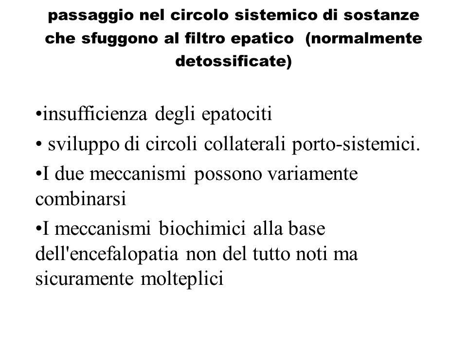passaggio nel circolo sistemico di sostanze che sfuggono al filtro epatico (normalmente detossificate) insufficienza degli epatociti sviluppo di circo