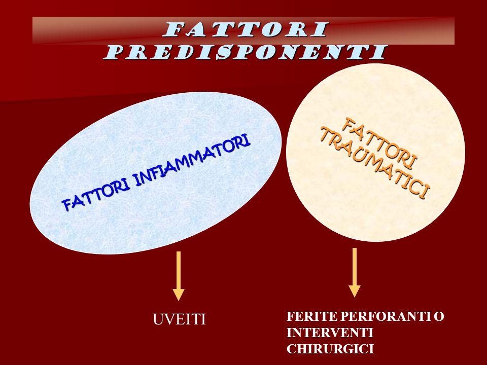 FATTORI INFIAMMATORI FATTORI TRAUMATICI TRAUMATICI FATTORI PREDISPONENTI UVEITI FERITE PERFORANTI O INTERVENTI CHIRURGICI