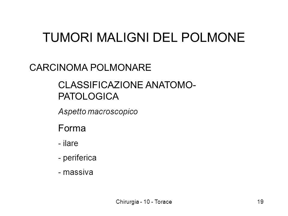 TUMORI MALIGNI DEL POLMONE CARCINOMA POLMONARE CLASSIFICAZIONE ANATOMO- PATOLOGICA Aspetto macroscopico Forma - ilare - periferica - massiva 19Chirurgia - 10 - Torace