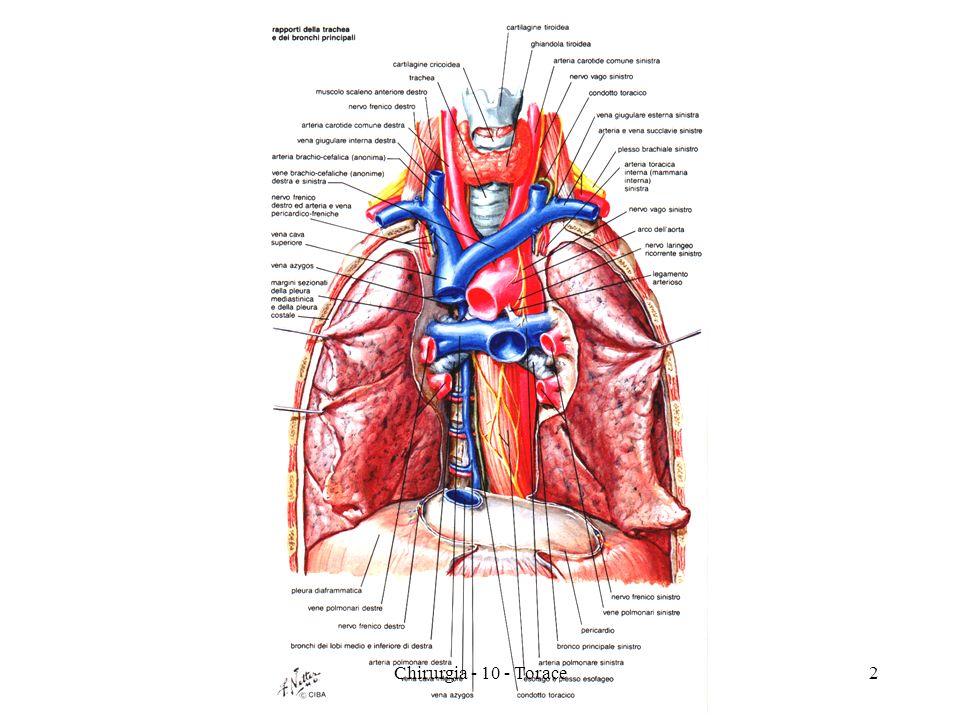 TUMORI MALIGNI DEL POLMONE CARCINOMA POLMONARE TERAPIA CHIRURGIA/TORACOSCOPIA RT e CT palliative 33Chirurgia - 10 - Torace