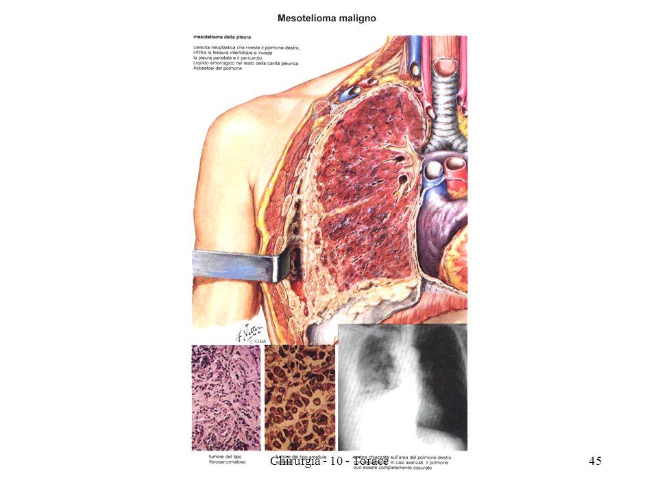 45Chirurgia - 10 - Torace