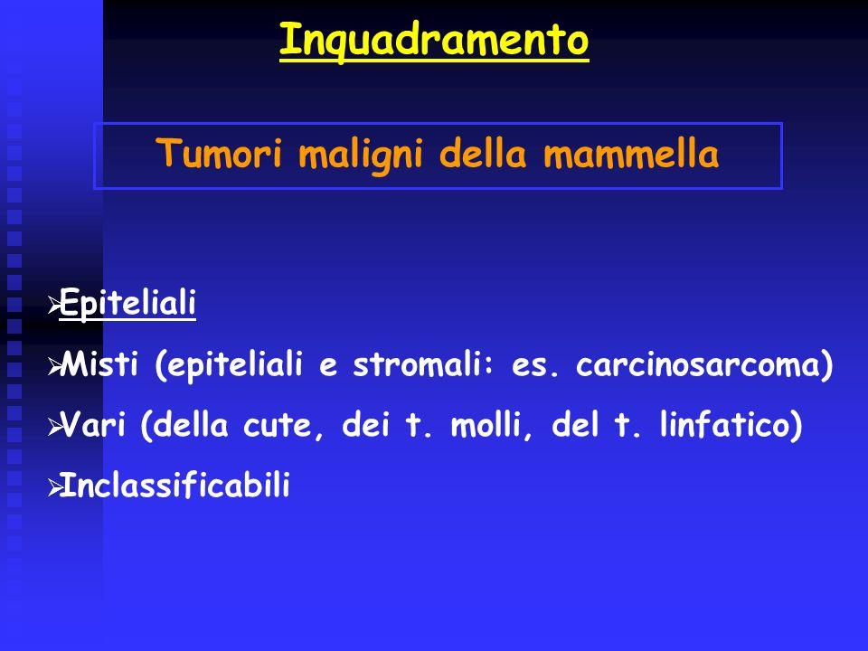 Inquadramento Tumori maligni della mammella Epiteliali Misti (epiteliali e stromali: es. carcinosarcoma) Vari (della cute, dei t. molli, del t. linfat