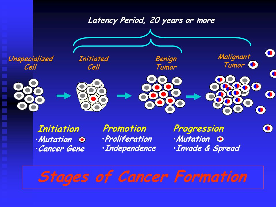 Initiation PromotionProgression Mutation Cancer Gene Proliferation Independence Mutation Invade & Spread Stages of Cancer Formation Unspecialized Cell