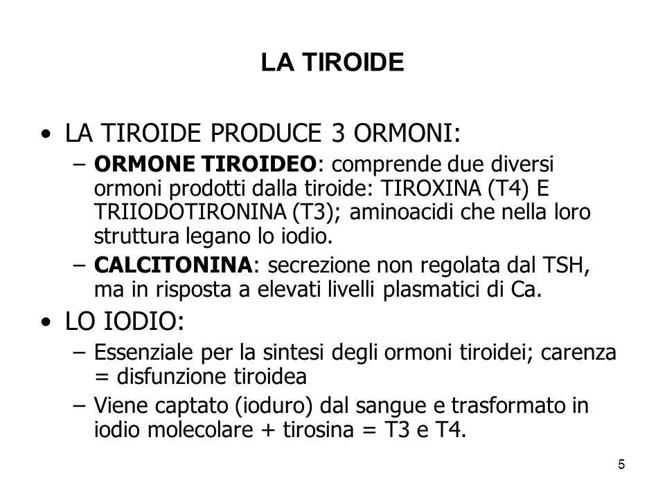 LA TIROIDE LA TIROIDE PRODUCE 3 ORMONI: –ORMONE TIROIDEO: comprende due diversi ormoni prodotti dalla tiroide: TIROXINA (T4) E TRIIODOTIRONINA (T3); a