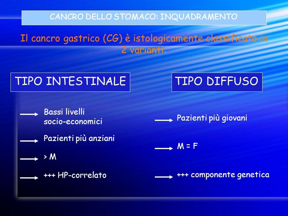 CANCRO DELLO STOMACO: INQUADRAMENTO Il cancro gastrico (CG) è istologicamente classificato in 2 varianti: TIPO INTESTINALETIPO DIFFUSO Bassi livelli s
