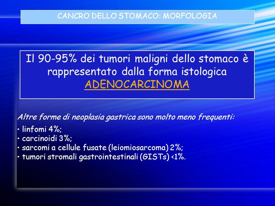 CANCRO DELLO STOMACO: MORFOLOGIA Il 90-95% dei tumori maligni dello stomaco è rappresentato dalla forma istologica ADENOCARCINOMA linfomi 4%; carcinoi