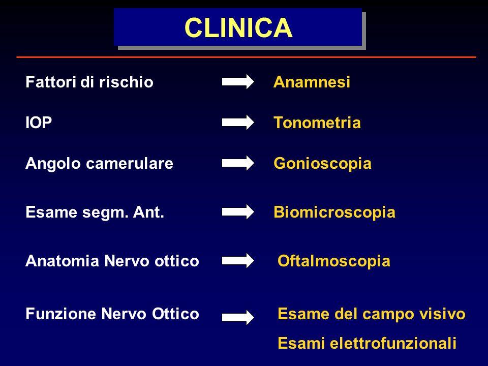 AnamnesiFattori di rischio TonometriaIOP Anatomia Nervo otticoOftalmoscopia Funzione Nervo OtticoEsame del campo visivo Esami elettrofunzionali Angolo camerulareGonioscopia BiomicroscopiaEsame segm.