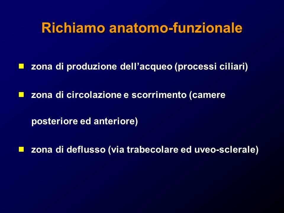 Richiamo anatomo-funzionale zona di produzione dellacqueo (processi ciliari) zona di circolazione e scorrimento (camere posteriore ed anteriore) zona di deflusso (via trabecolare ed uveo-sclerale)