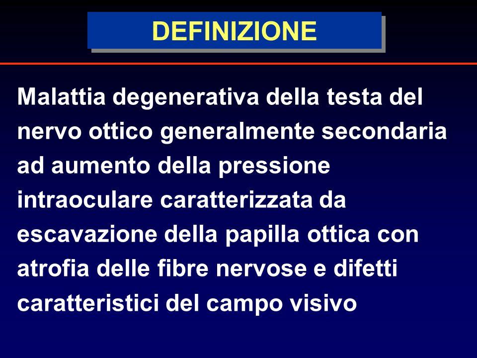 DEFINIZIONE Malattia degenerativa della testa del nervo ottico generalmente secondaria ad aumento della pressione intraoculare caratterizzata da escavazione della papilla ottica con atrofia delle fibre nervose e difetti caratteristici del campo visivo