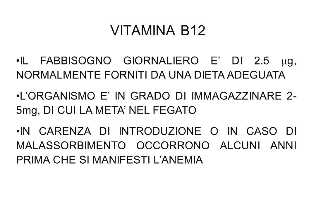 VITAMINA B12 IL FABBISOGNO GIORNALIERO E DI 2.5 g, NORMALMENTE FORNITI DA UNA DIETA ADEGUATA LORGANISMO E IN GRADO DI IMMAGAZZINARE 2- 5mg, DI CUI LA
