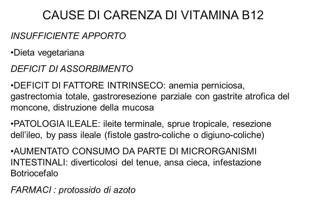CAUSE DI CARENZA DI VITAMINA B12 INSUFFICIENTE APPORTO Dieta vegetariana DEFICIT DI ASSORBIMENTO DEFICIT DI FATTORE INTRINSECO: anemia perniciosa, gas