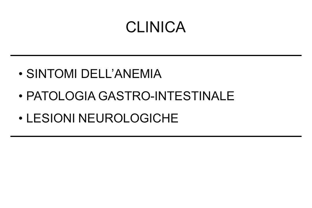 CLINICA SINTOMI DELLANEMIA PATOLOGIA GASTRO-INTESTINALE LESIONI NEUROLOGICHE