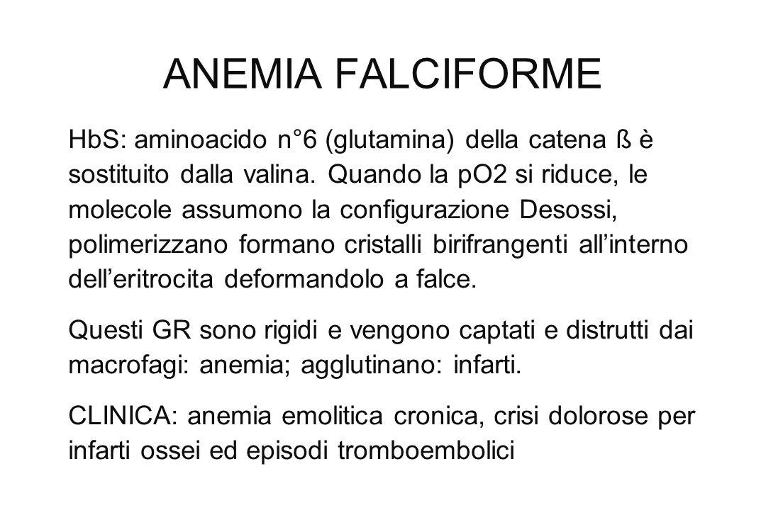 ANEMIA FALCIFORME HbS: aminoacido n°6 (glutamina) della catena ß è sostituito dalla valina. Quando la pO2 si riduce, le molecole assumono la configura
