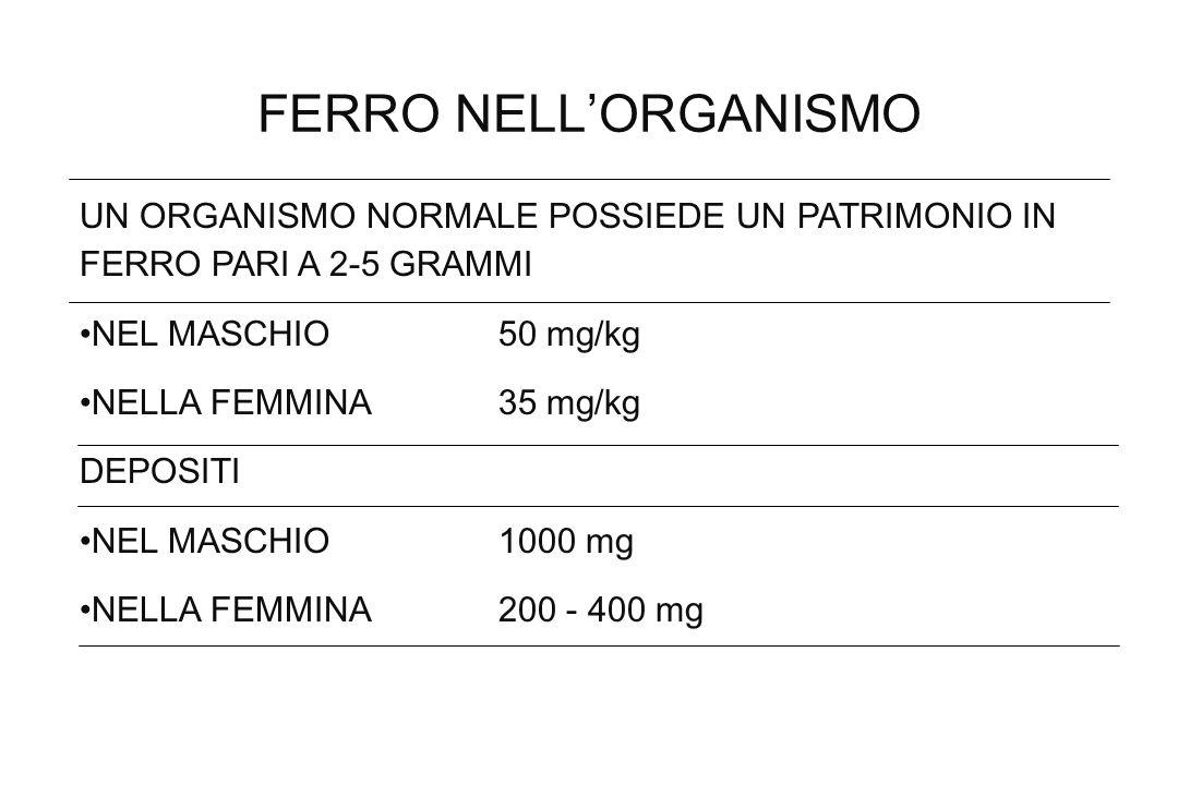 FERRO NELLORGANISMO UN ORGANISMO NORMALE POSSIEDE UN PATRIMONIO IN FERRO PARI A 2-5 GRAMMI NEL MASCHIO 50 mg/kg NELLA FEMMINA 35 mg/kg DEPOSITI NEL MA