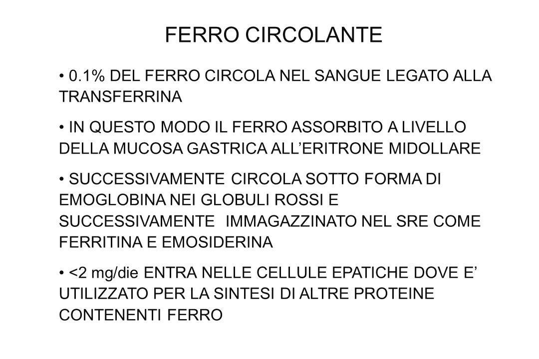 FERRO CIRCOLANTE 0.1% DEL FERRO CIRCOLA NEL SANGUE LEGATO ALLA TRANSFERRINA IN QUESTO MODO IL FERRO ASSORBITO A LIVELLO DELLA MUCOSA GASTRICA ALLERITR