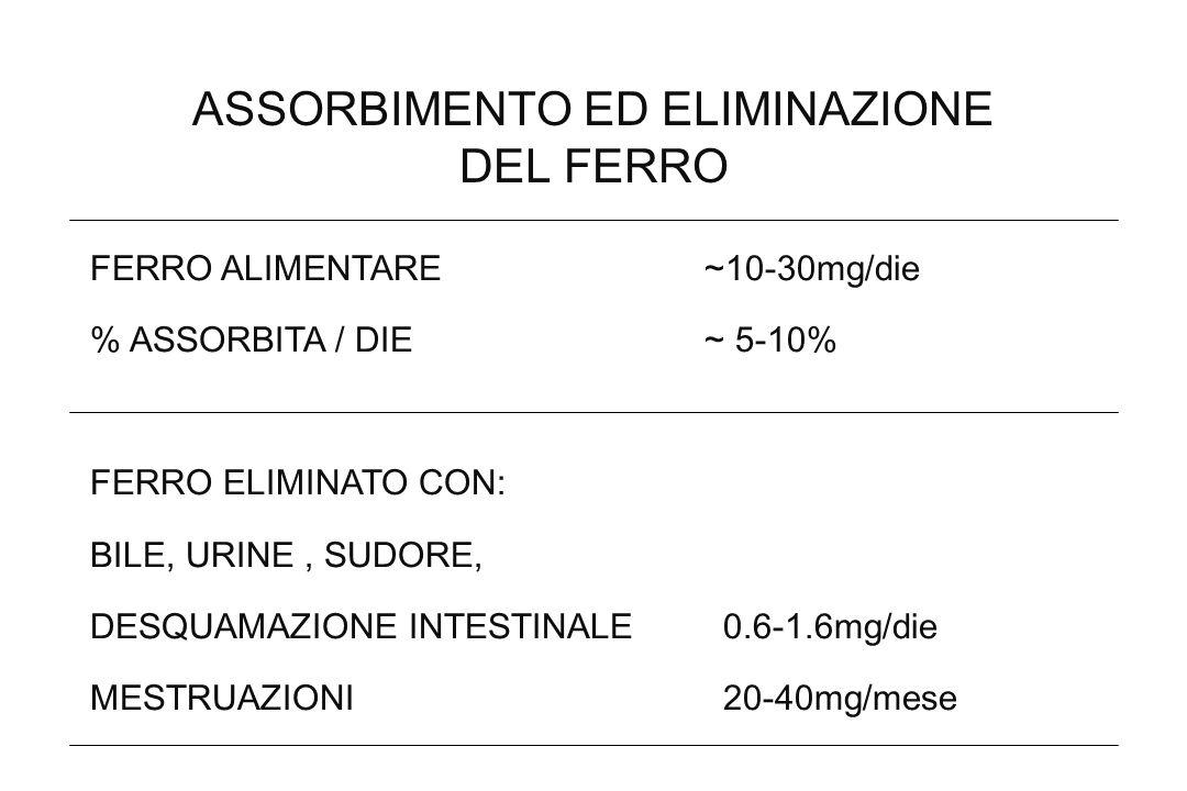 ASSORBIMENTO ED ELIMINAZIONE DEL FERRO FERRO ALIMENTARE ~10-30mg/die % ASSORBITA / DIE ~ 5-10% FERRO ELIMINATO CON: BILE, URINE, SUDORE, DESQUAMAZIONE