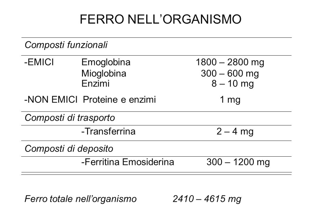 FERRO NELLORGANISMO Composti funzionali -EMICIEmoglobina 1800 – 2800 mg Mioglobina 300 – 600 mg Enzimi 8 – 10 mg -NON EMICI Proteine e enzimi 1 mg Com