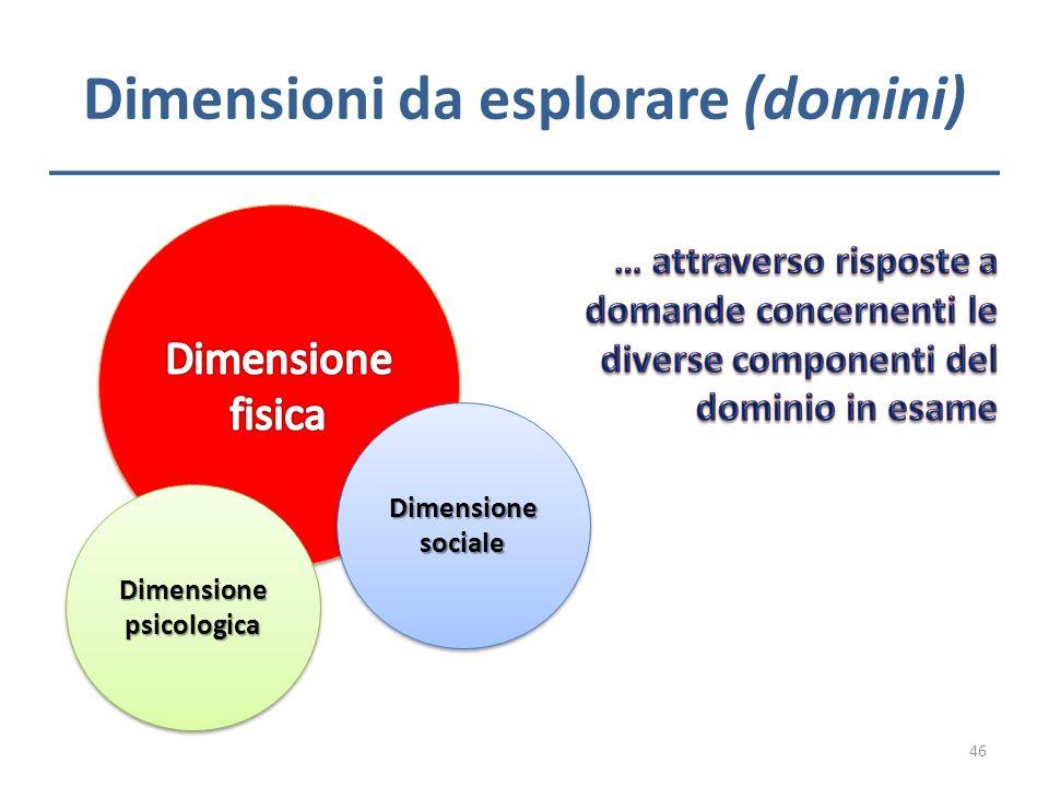 Dimensioni da esplorare (domini) Dimensione psicologica Dimensione sociale 46