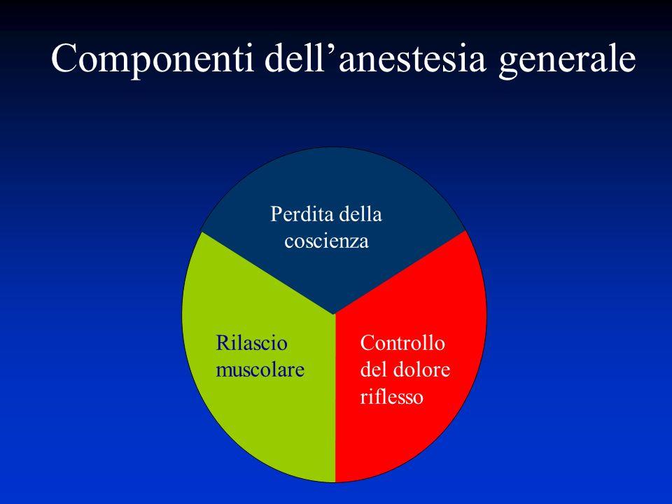 Componenti dellanestesia generale Perdita della coscienza Rilascio muscolare Controllo del dolore riflesso