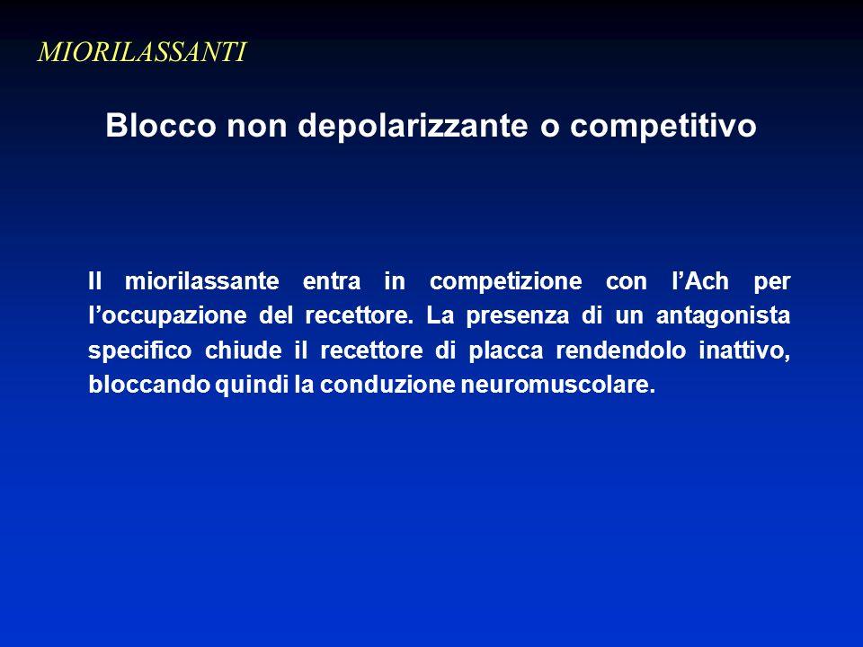 Blocco non depolarizzante o competitivo Il miorilassante entra in competizione con lAch per loccupazione del recettore.