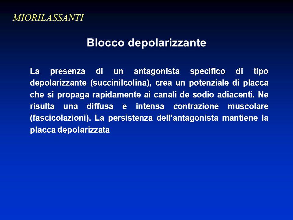 Blocco depolarizzante La presenza di un antagonista specifico di tipo depolarizzante (succinilcolina), crea un potenziale di placca che si propaga rapidamente ai canali de sodio adiacenti.