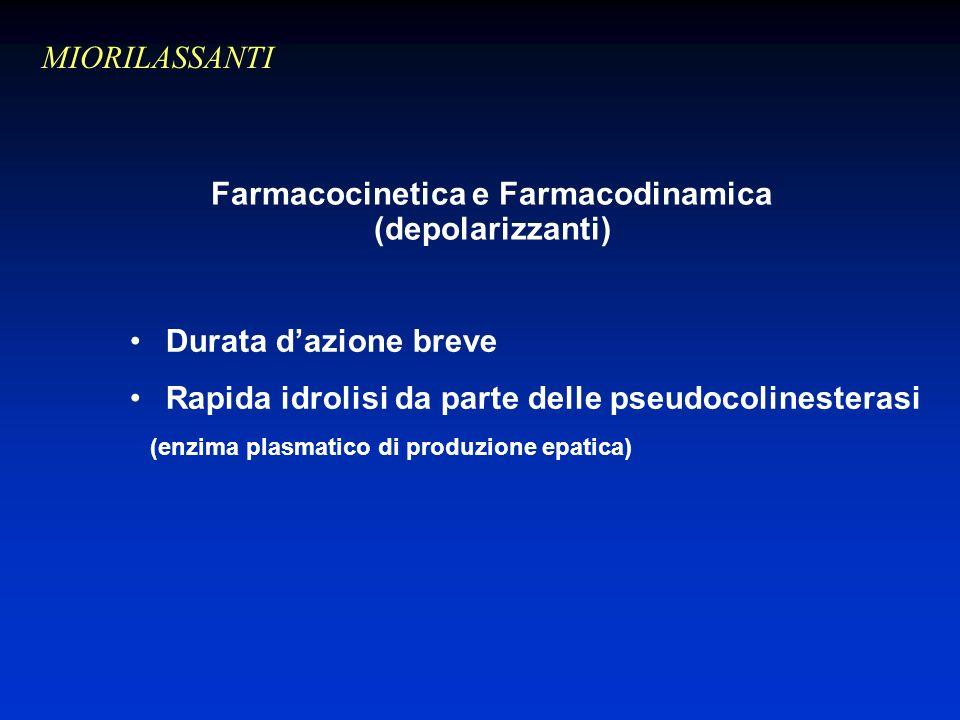 Durata dazione breve Rapida idrolisi da parte delle pseudocolinesterasi (enzima plasmatico di produzione epatica) Farmacocinetica e Farmacodinamica (depolarizzanti) MIORILASSANTI