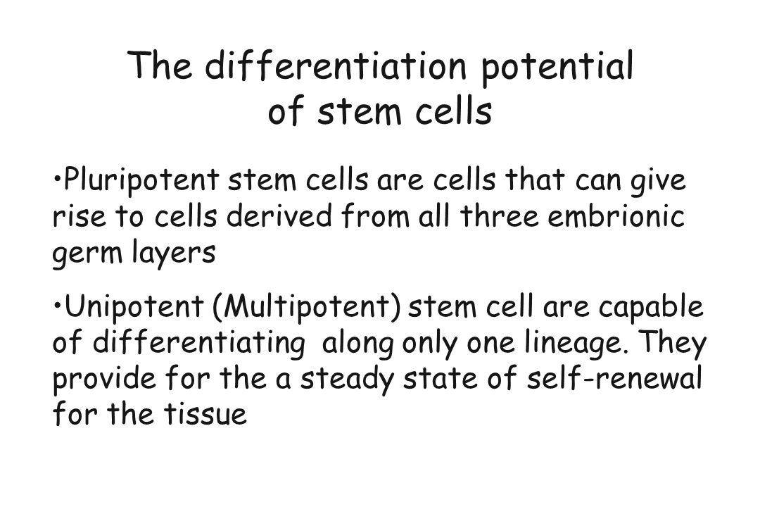 The differentiation potential of stem cells Pluripotent stem cells are cells that can give rise to cells derived from all three embrionic germ layers