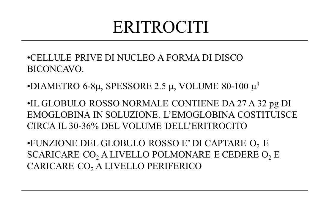 ERITROCITI CELLULE PRIVE DI NUCLEO A FORMA DI DISCO BICONCAVO. DIAMETRO 6-8, SPESSORE 2.5, VOLUME 80-100 3 IL GLOBULO ROSSO NORMALE CONTIENE DA 27 A 3