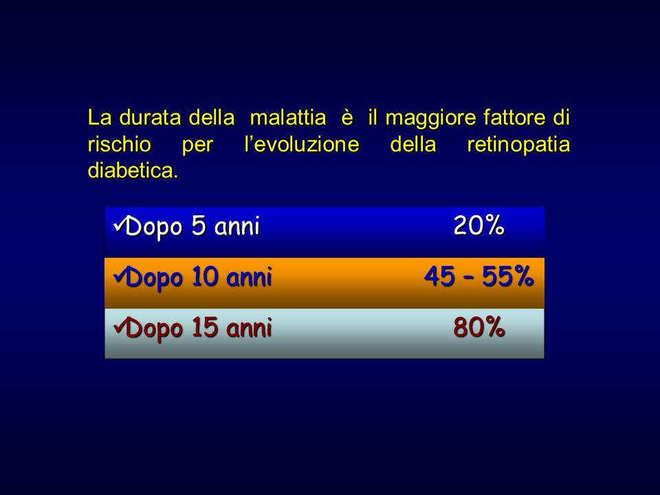La durata della malattia è il maggiore fattore di rischio per levoluzione della retinopatia diabetica. Dopo 5 anni Dopo 5 anni20% Dopo 10 anni Dopo 10