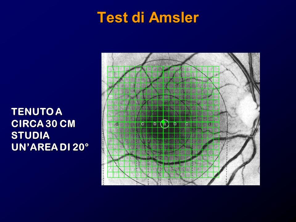 Test di Amsler TENUTO A CIRCA 30 CM STUDIA UNAREA DI 20°