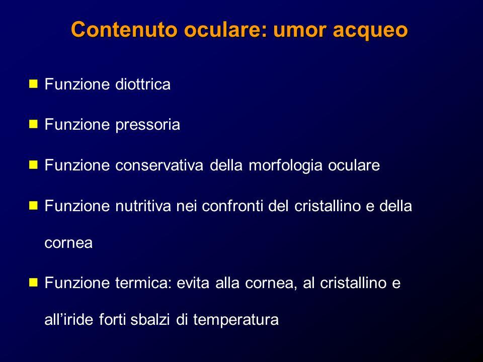 Contenuto oculare: umor acqueo Funzione diottrica Funzione pressoria Funzione conservativa della morfologia oculare Funzione nutritiva nei confronti d