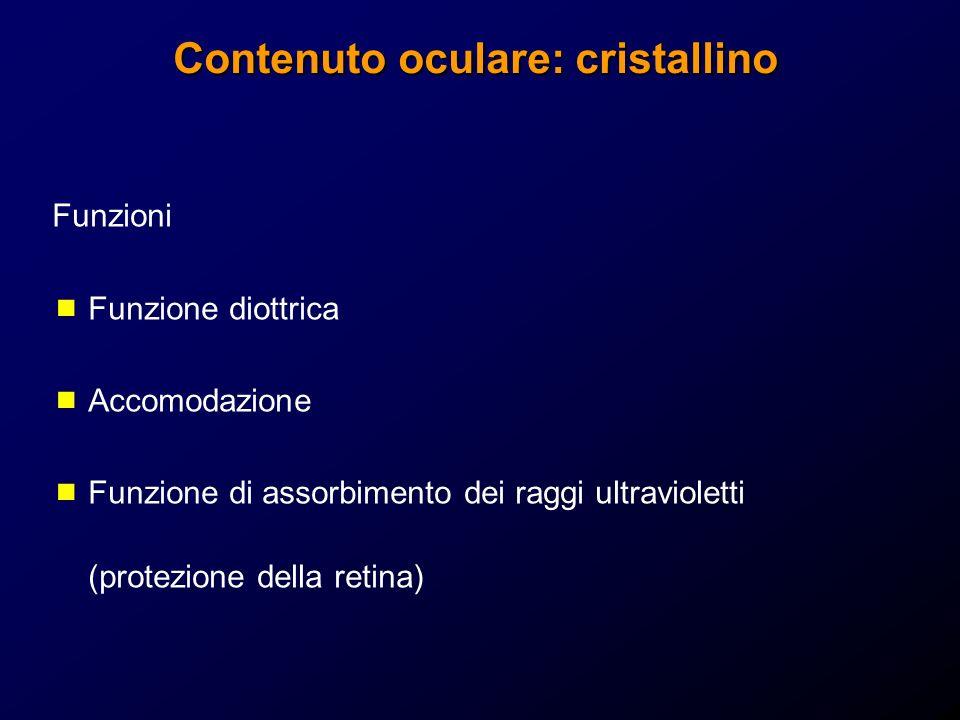 Contenuto oculare: cristallino Funzioni Funzione diottrica Accomodazione Funzione di assorbimento dei raggi ultravioletti (protezione della retina)