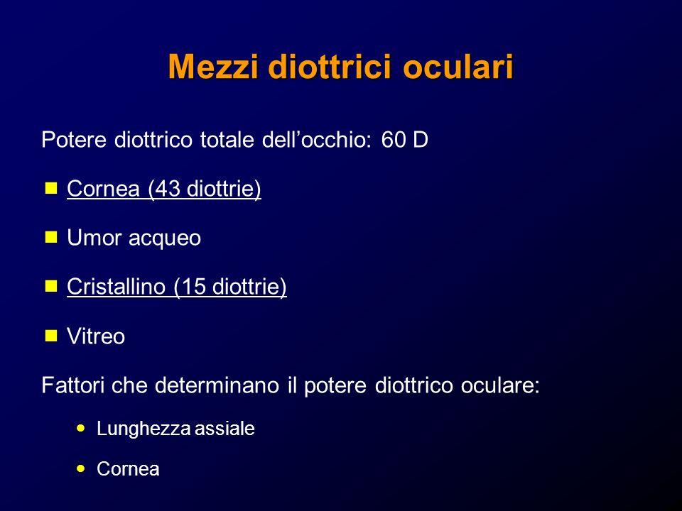 Accomodazione Locchio umano è un sistema diottrico dinamico in grado di modificare la focalizzazione: il cristallino può infatti modificare il suo potere di vergenza mediante il processo di accomodazione Potere diottrico del cristallino variabile Stato non accomodato (10-12 diottrie) Stato accomodato (18-20 diottrie) Potere accomodativo 6-8 diottrie