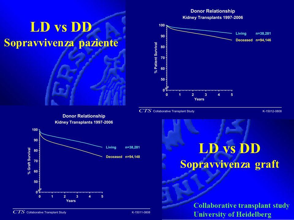 Collaborative transplant study University of Heidelberg LD vs DD Sopravvivenza paziente LD vs DD Sopravvivenza graft