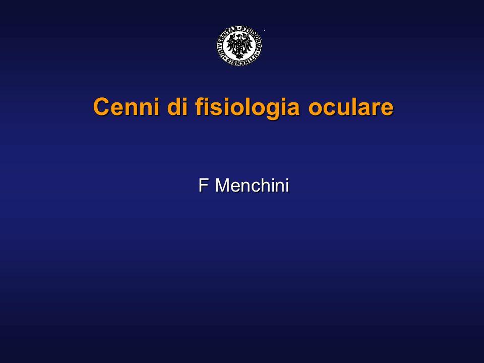 Fisiologia Studio delle funzionalità dellocchio umano in condizioni di normalità La funzione della retina è trasformare gli stimoli luminosi in segnali elettrochimici Il processo della visione inizia nei fotorecettori e, attraverso le cellule bipolari e gangliari, giunge al nervo ottico