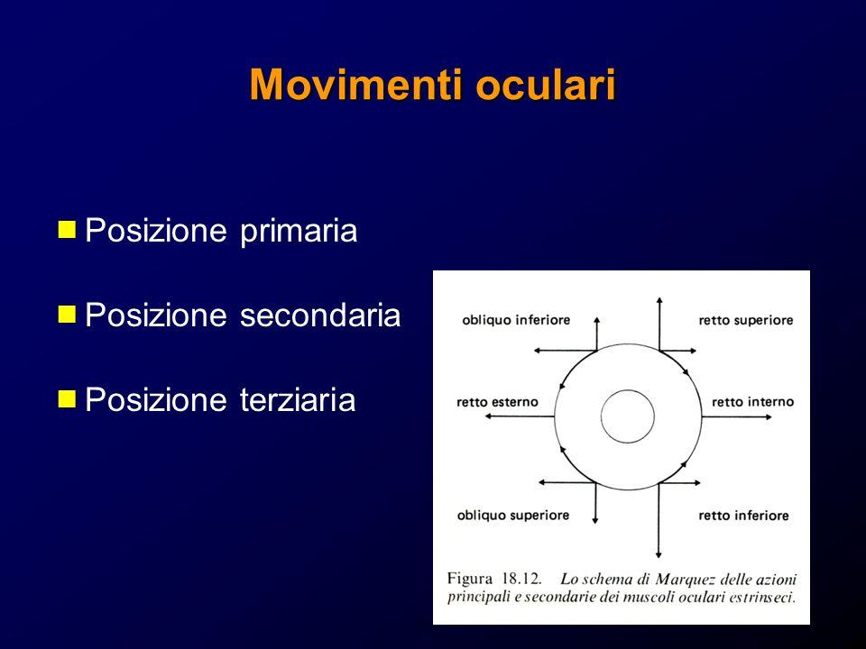 Movimenti oculari Posizione primaria Posizione secondaria Posizione terziaria