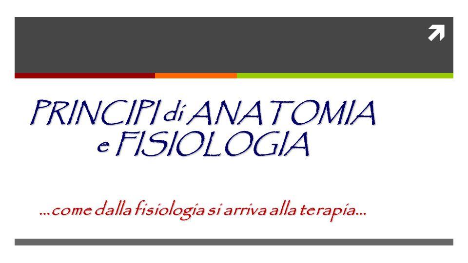 PRINCIPI di ANATOMIA e FISIOLOGIA …come dalla fisiologia si arriva alla terapia…