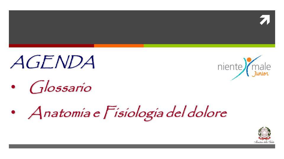 AGENDA Glossario Glossario Anatomia e Fisiologia del dolore Anatomia e Fisiologia del dolore