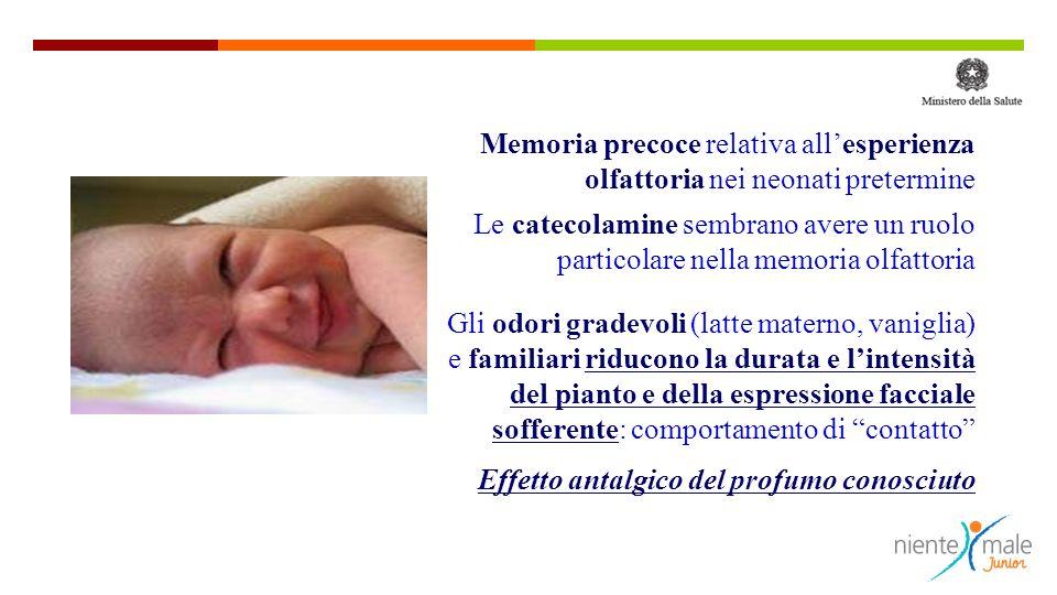 Memoria precoce relativa allesperienza olfattoria nei neonati pretermine Le catecolamine sembrano avere un ruolo particolare nella memoria olfattoria