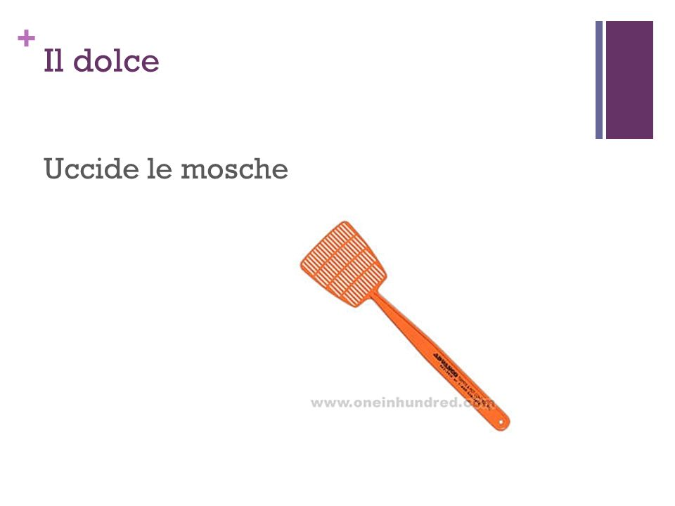 + Il dolce Uccide le mosche