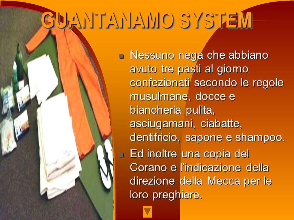 IN ITALIA IN ITALIA Se sei un TERRORISTA, in Italia verrai accolto come un combattente per la resistenza.