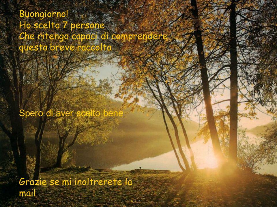 Preghiera di Santa Teresa di Lisieux Ogni immagine ha un legame con le parole Scopritelo e ristoratevi contemplando www.PaginaInizio.com La Pagina Ini